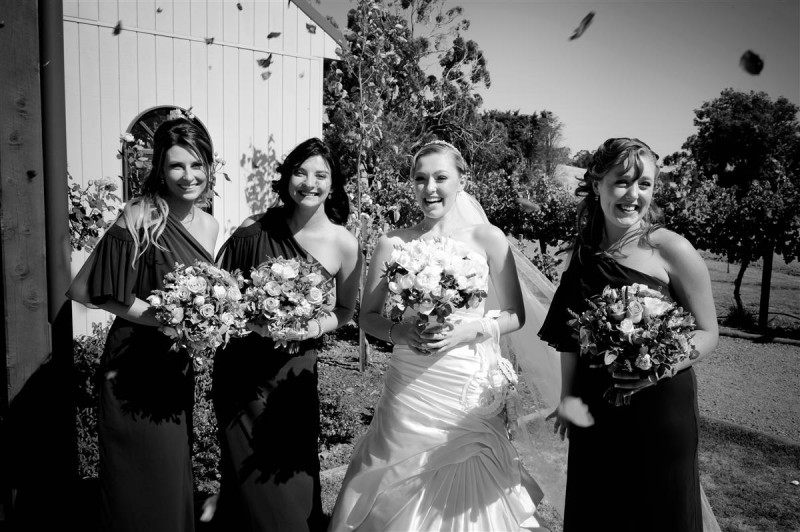 Megan_Blake_Vineyard-Wedding_016