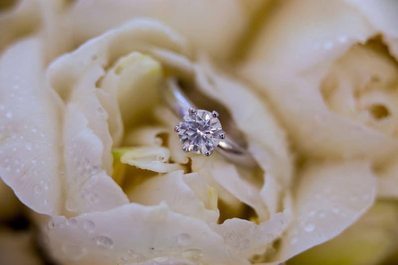 Hannah_Brent_Elegant-Wedding_012