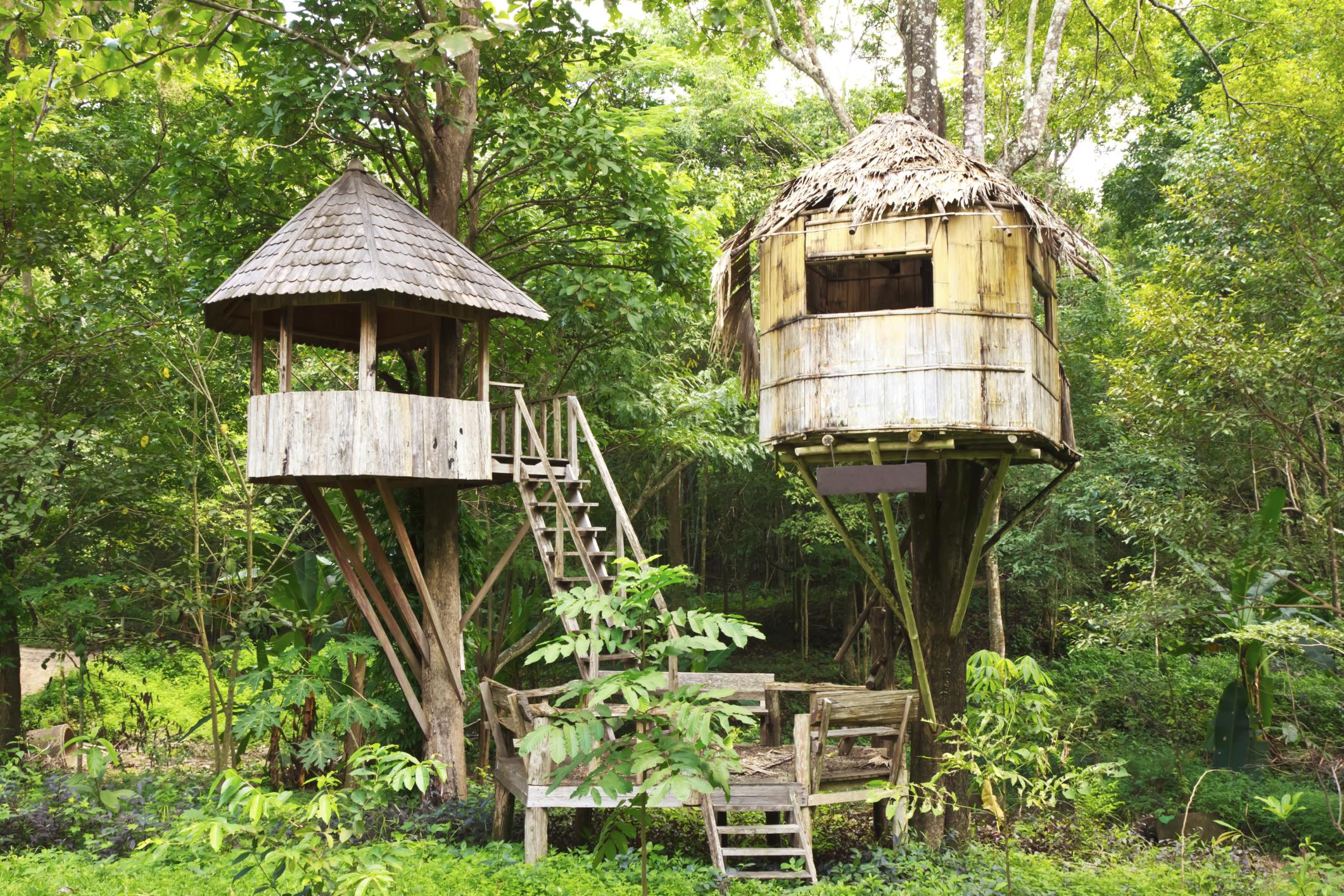 Honeymoon ideas - stay in a treehouse