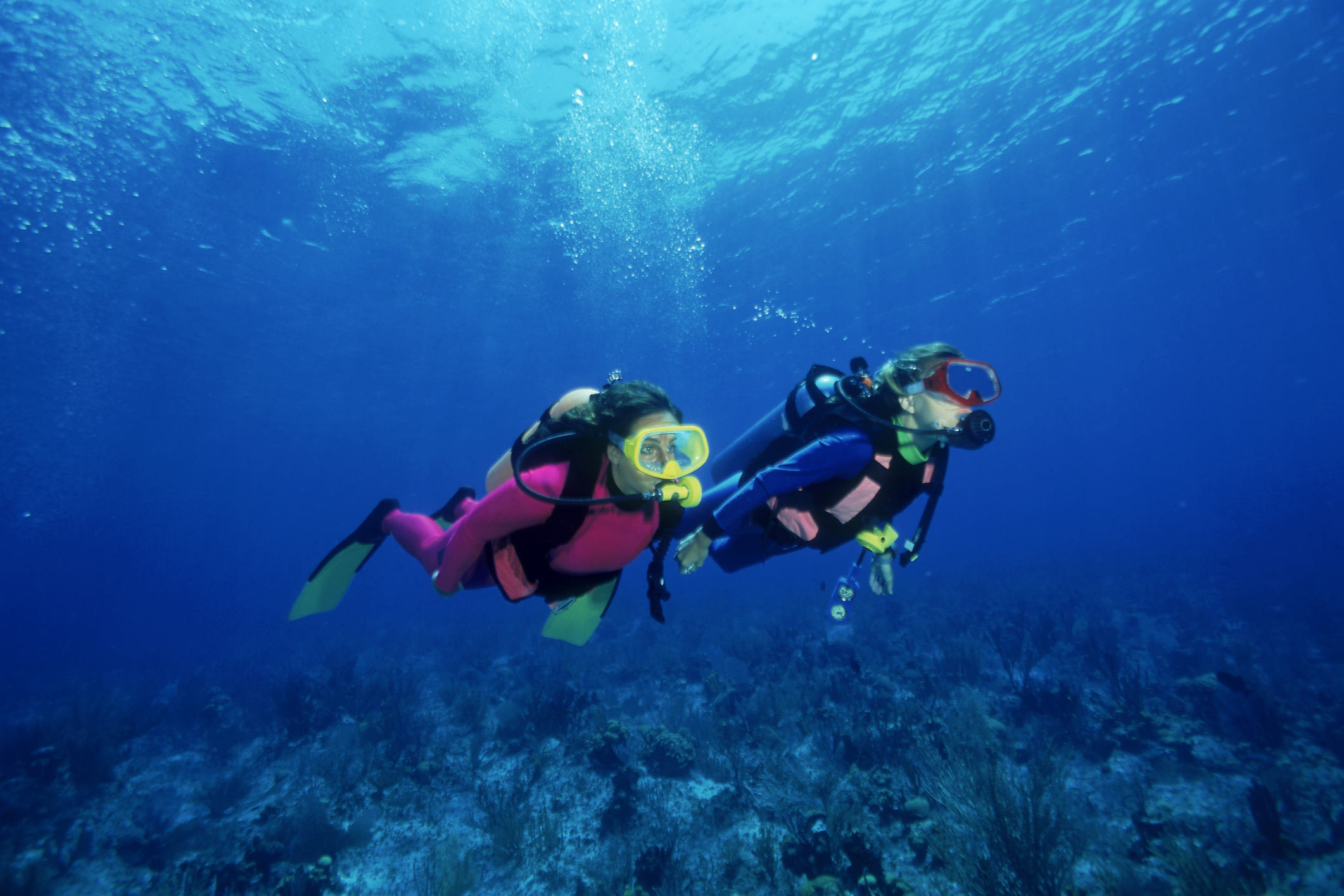 Honeymoon ideas - diving