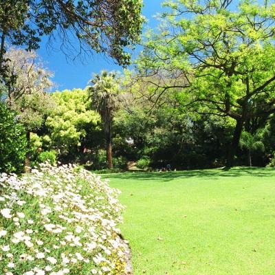 The Harold Boas Gardens