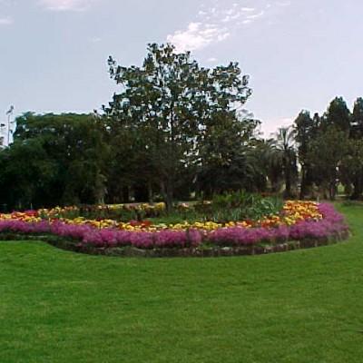 Footscray Gardens
