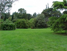 Royal Botanic Gardens – Princess Lawn