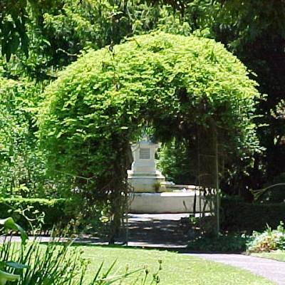Geelong Botanic Gardens Weddings