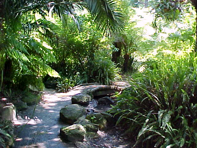 Garden design software for Garden design geelong
