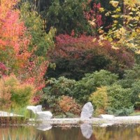 Janalli Gardens