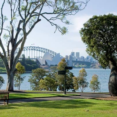 Eucalypt Lawn - Royal Botanic Gardens