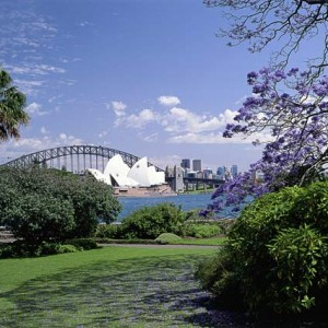 Royal Botanic Gardens – Mare & Foal Statue Lawn