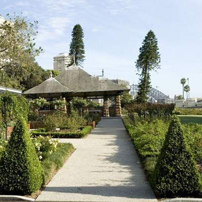 Royal Botanic Gardens – Rose Garden