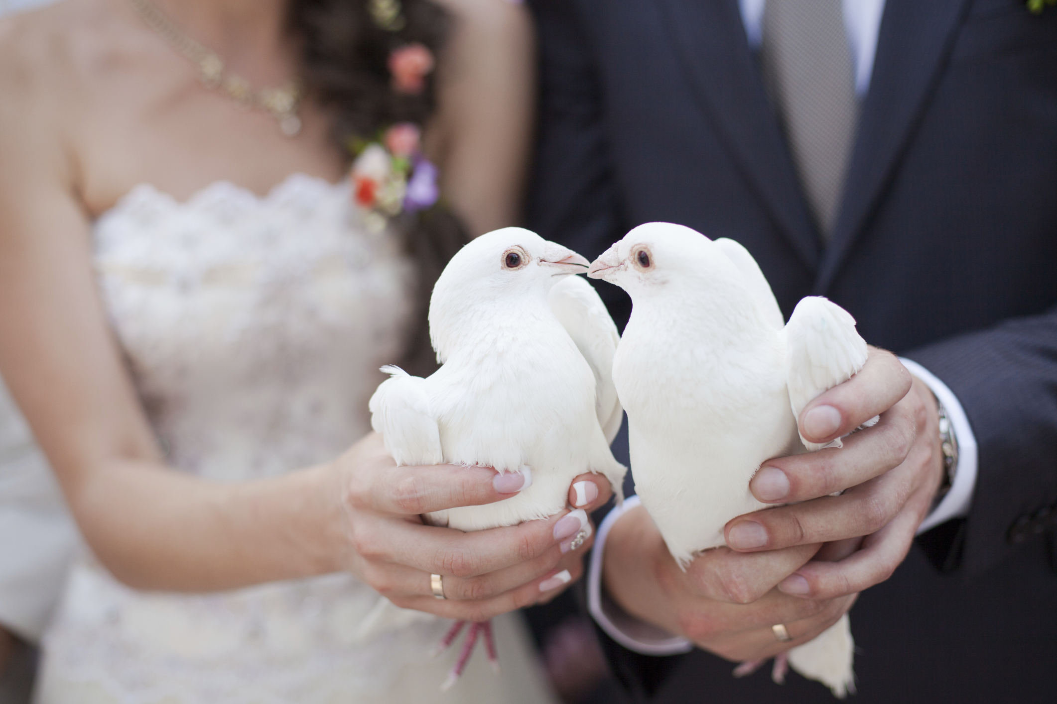 185811394 - Wedding Ceremony Meaning