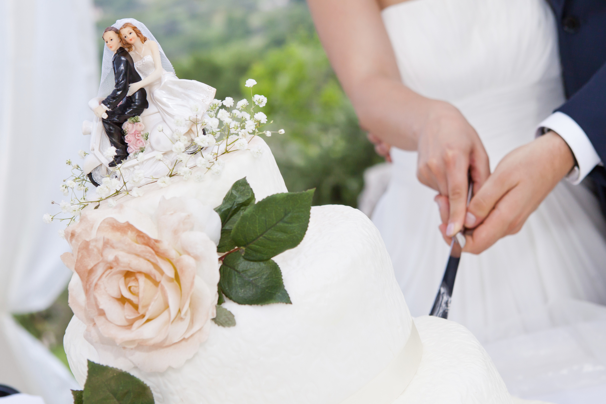 when should i cut the wedding cake wedding reception order of service articles easy 27115